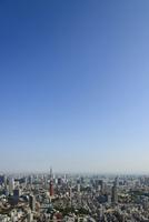 東京港区ビル群