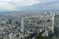 新宿都市と空