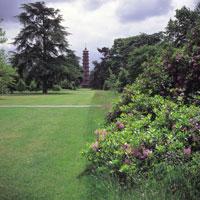 ロンドンの王立植物園と芝生 イギリス