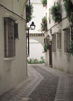 コルドバの白壁の家 スペイン