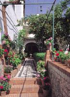 グラナダの街並み スペイン