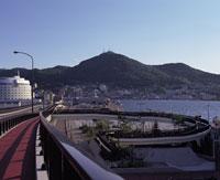湾岸道路と函館山