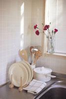 キッチンとカーネーション 11012011566| 写真素材・ストックフォト・画像・イラスト素材|アマナイメージズ