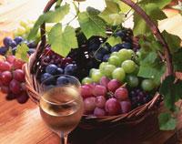 4種類のブドウとワイン