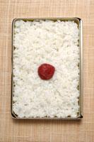 日の丸弁当 11012012601| 写真素材・ストックフォト・画像・イラスト素材|アマナイメージズ