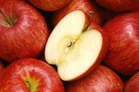 リンゴの断面と一面のリンゴ