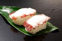 にぎり寿司(タコ)