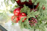 クリスマスツリー 11014004765| 写真素材・ストックフォト・画像・イラスト素材|アマナイメージズ
