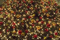 クリスマスツリー 11014004790| 写真素材・ストックフォト・画像・イラスト素材|アマナイメージズ