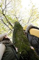 木を見上げる女性たち