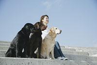 犬(ラブラドール・レトリーバー)3頭と女性 11014008691| 写真素材・ストックフォト・画像・イラスト素材|アマナイメージズ