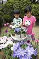 花を見る子供たち 11014009039| 写真素材・ストックフォト・画像・イラスト素材|アマナイメージズ
