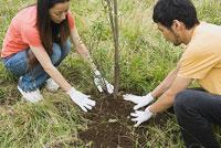 植林をする若者 11014019507| 写真素材・ストックフォト・画像・イラスト素材|アマナイメージズ