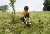 植林をする若者 11014019517| 写真素材・ストックフォト・画像・イラスト素材|アマナイメージズ