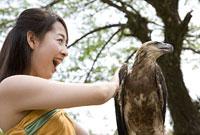 鷲に触れる女性
