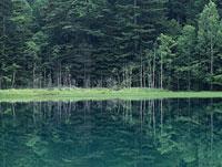 湖面と森林 11014023295| 写真素材・ストックフォト・画像・イラスト素材|アマナイメージズ