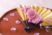 扇子と桃の花