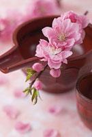 お神酒と桃の花
