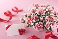 母の日のカーネーションとメッセージカード 11014025933| 写真素材・ストックフォト・画像・イラスト素材|アマナイメージズ
