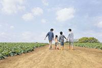 畑の中の道を歩く親子4人