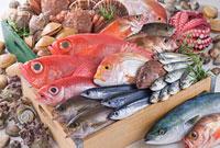 鮮魚集合イメージ 11014028063| 写真素材・ストックフォト・画像・イラスト素材|アマナイメージズ
