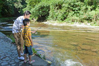 渓流で釣りをする父親と息子