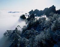 黄山 冬の清涼台