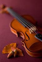 落ち葉とバイオリン