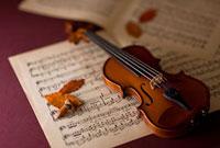 落ち葉とバイオリンと楽譜