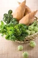 春の山菜集合