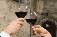 Young couple toasting with red wine