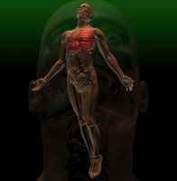Illustration of the skeleton underneath a mans body