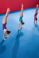 Gymnasts doing handstands