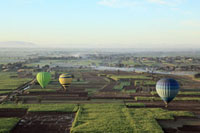 Hot air balloons over fields near luxor