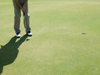 Man playing golf,on putting green