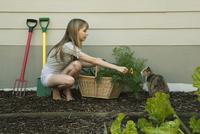 Young woman showing cat flower 11015217724| 写真素材・ストックフォト・画像・イラスト素材|アマナイメージズ