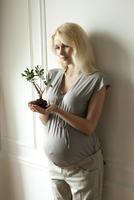 Pregnant woman holding sapling 11015223368  写真素材・ストックフォト・画像・イラスト素材 アマナイメージズ