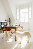 Girl playing with dog at kitchen table