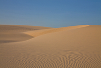 Desert sand dunes, Canoa Quebrada, Fortaleza, Brazil