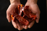 Hands holding dried red chillies