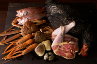 Still life with selection of seafood and chicken