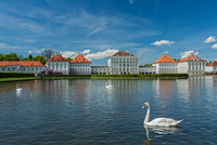 Swan in fountain in front of the Nymphenburg Palace, Munich,