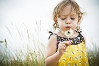 Portrait of female toddler with dandelion clock