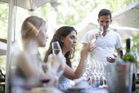 Young friends tasting and looking at wine at vineyard bar