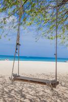 Tree swing on Palm Beach, Aruba, Lesser Antilles, Caribbean