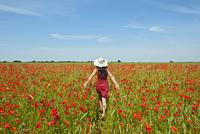 Woman walking through poppy field 11015247616| 写真素材・ストックフォト・画像・イラスト素材|アマナイメージズ