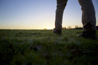 Legs of male hiker walking over field at sunset