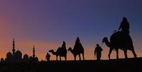 Camel caravan arriving at mosque, Abu Dhabi, United Arab Emirates