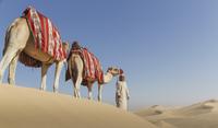 Bedouin leading two camels in desert, Dubai, United Arab Emirates