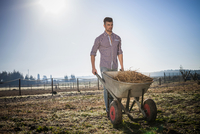 Young man with wheelbarrow in field